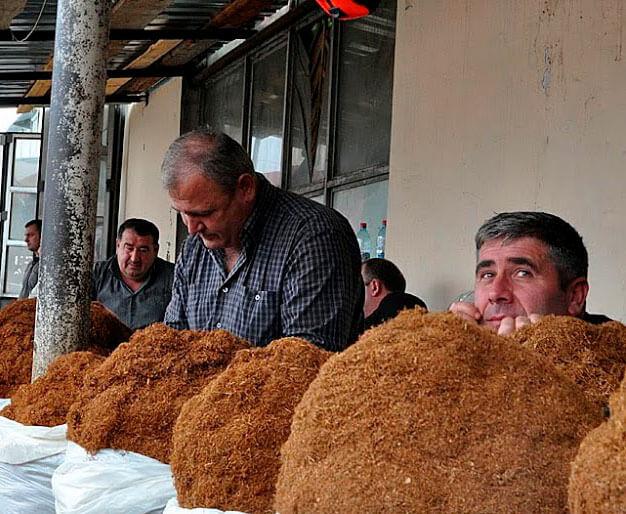 кавказские горы табака